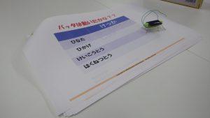 IMGP1041小